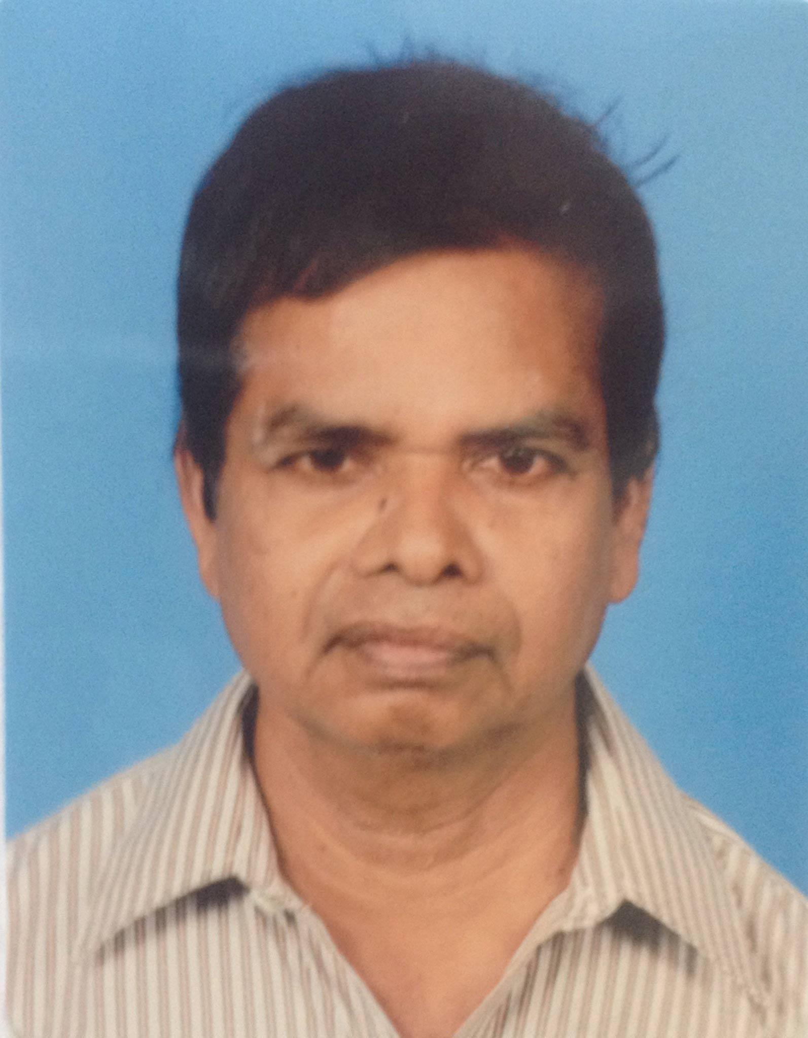 Girish chowdhary phd thesis